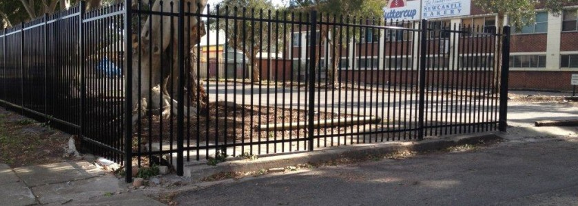 School Security Fencing Newcastle, chainwire fencing newcastle, fencing newcastle