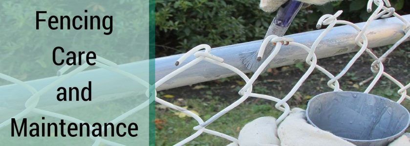 Fencing Care and Maintenance