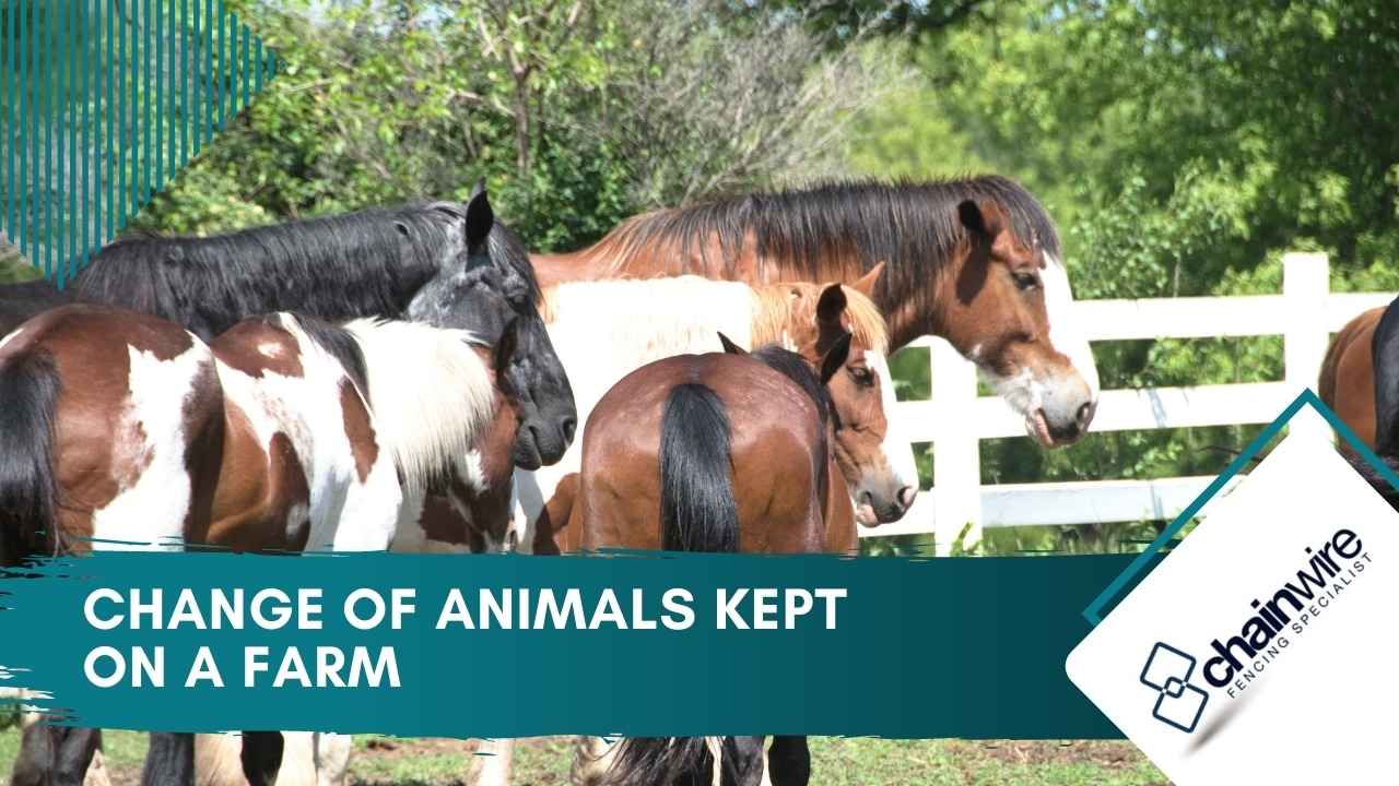 Change Of Animals Kept On A Farm